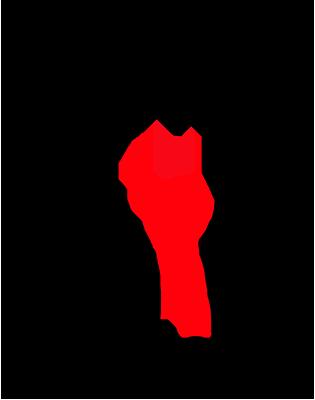 Centro Brasileiro de Estudos da América Latina